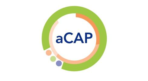 CAP Program launches new certification for early career analytics professionals