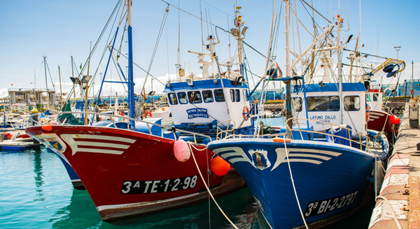 Combinatorial Exchanges for Trading Fishery Access Rights