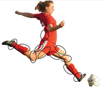 Figure 4: High-propensity injury locations for women's soccer players.