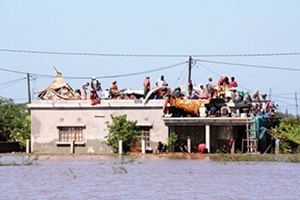 Residents on the roof of a house surrounded by floodwaters in Chokwe district in Mozambique in 2013.  Source: AFP/Ussene Mamudo